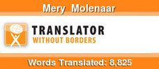 English to Dutch volunteer translator