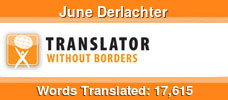 Dutch to English volunteer translator